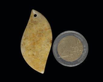 A natural Coral Fossil Pendant stone (EA1089)