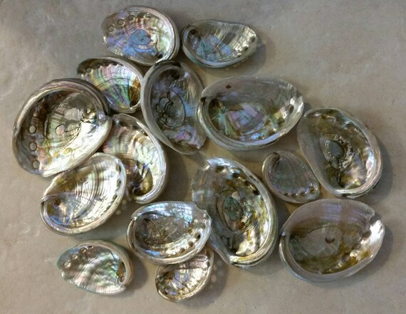 how to cook raw abalone