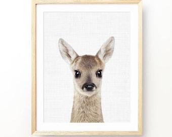 Deer Print, Bambi Print, Animal Print Nursery, Nursery Decor, Baby Animal Print, Baby Animal Portrait, Woodland Animal Print, Digital Print