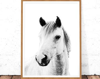 Horse Poster, Horse Art, Digital Download, Black and White Print, Horse Decor, Large Printable Wall Art Horse Printable Art, Photography Art