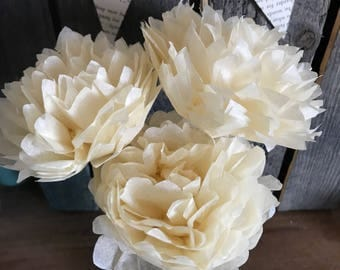 Tissue Paper Flowers, Cream, Three Count