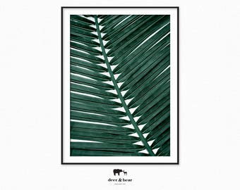 Green Leaf Tropical Print Botanical Plant Wall Art Palm Leaf Photography Minimal Nature Modern Wall Decor Instant Download Summer Printable