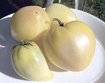 Tomato Bull's White Heart 10 Seeds -Giant Tomato, Sweet, doesn't contain acid