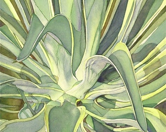 Original watercolor painting detailed botanical Agave by Phyllis Nathans for art collectors decor statement art