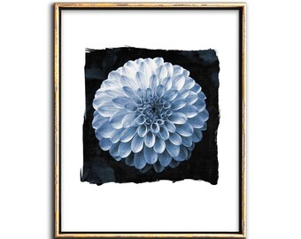 Botanical Art, Modern, Cyanotype, Digital, Collage, Printable Art, Gallery Wall Decor, Blue, White, Flower Art Print, Photo, Photgraph
