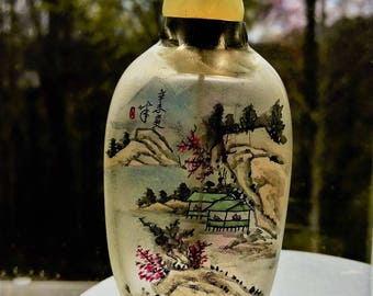 CHINESE SNUFF BOTTLE - Reverse Hand Painted Authentic Asian 1800's  Signed Jade/Agate / Bone Spoon  Mint Cond. Free Shipping