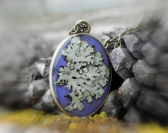 Mens Lichen Moss Woodland Necklace, Terrarium Jewelry, Real Forest Plant Resin Pendant, Nature Inspired, Nature Lovers Gift, Clear Resin