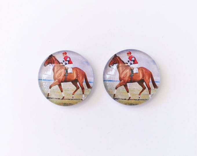 The 'Pharlap' Glass Earring Studs