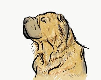 8x10 print custom dog portrait