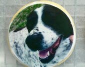 Photo cookies, logo cookies, custom cookies, birthday, holiday, party favors! (priced per dozen)