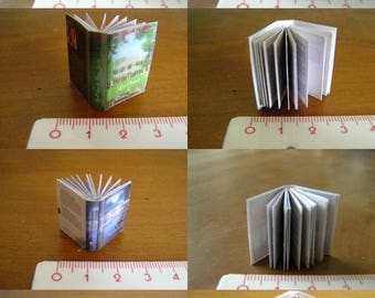 choice of miniature book, adult novel, walk in the Woods, cedar, a shadow on the past, the coruptrice