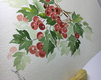 Original watercolor with red berries hand-painted in Italy. Collection of botanical paintings. Representations of gardens. Gardener's gift