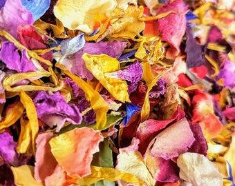 Real Petal Rainbow Biodegradable Confetti Mix