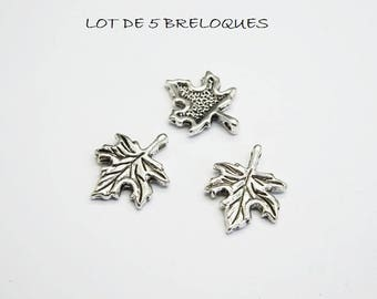 SET of 5 (B21) silver maple leaf charms
