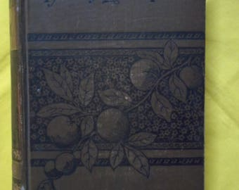 Tattered Tom, or The Story of a Street Arab, by Horatio Alger, Jr.