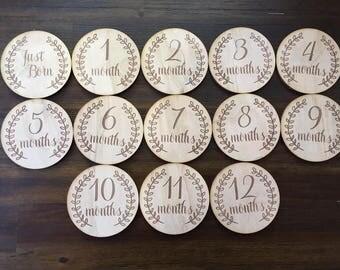 Baby Monthly Milestone Plaques