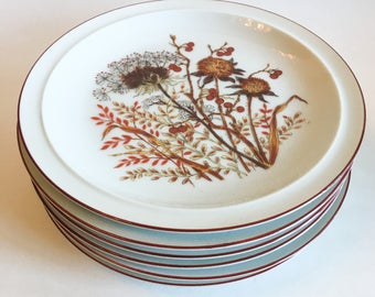 Fanci Florals Collection BRAMBLE Plate Set 6 Japan Wildflowers Brown