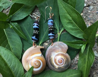 Sharks Eye Seashell Earrings with Marble Beads