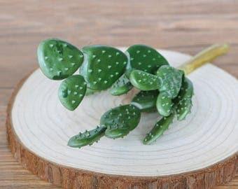 artificielle plantes grasses cactus faux imitation succulentes plantes de jardin bricolage miniature - Jardin Japonais Miniature Cactus