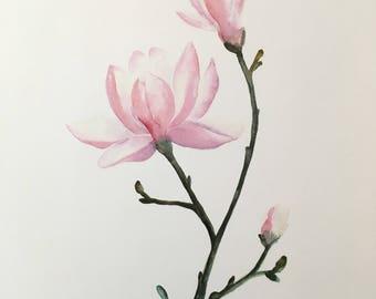 Purple Magnolia PRINT