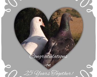 """Individual 140mm Square Blank """"Love Birds"""" Silver Wedding Anniversary Card """"Congratulations on 25 years together!"""" add own message"""