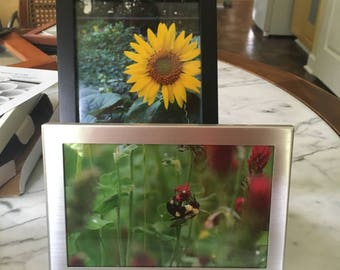 Framed 4x6 & 5x7 Photo Package