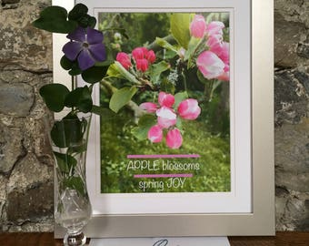 Apple Blossom in Springtime, photographic nature print, Ireland