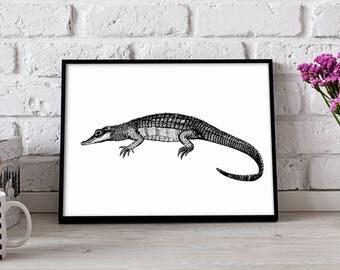 Alligator Reptile poster, Alligator Reptile wall art, Alligator  Reptile wall decor, Alligator Reptile print