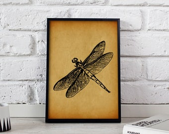 Dragonfly Insect Vintage poster, Dragonfly wall art, Gift poster, Dragonfly Vintage wall decor, Dragonfly print