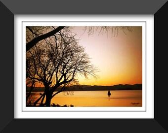 Winter's Glow - fine art, fine art photography, landscape, winter, lake, sunset, cold, Lake Champlain, Vermont, tree, stark, silhouette