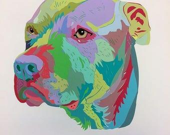 Pet Portrait: Pit Bull