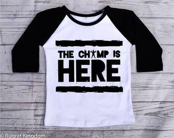 Toddler Shirt, Toddler Shirts, toddler tshirt, toddler girl clothes, toddler boy clothes, toddler raglan shirt, raglan tee, kids raglan