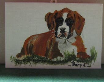 miniature painting of a young Boxer lying