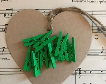 Lot 13 small clips Green