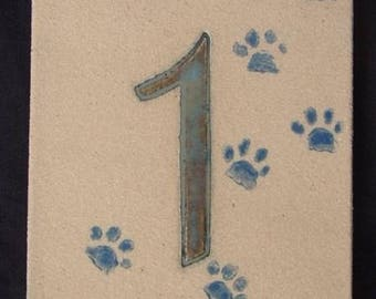 Blue door number '1' cat paws