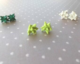 Succulent earrings