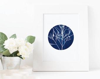 Stephen - Cyanotype Sun Print, Botany Leaf Wall Art A4 Poster