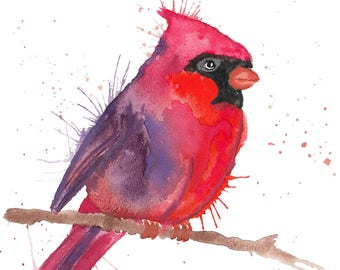 Cardinal Bird Watercolour Painting Giclee Print A4