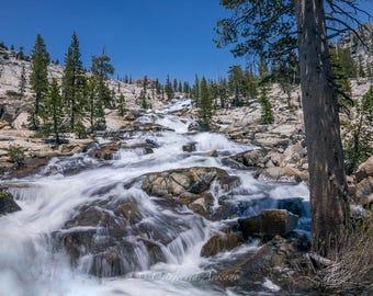 California Wilderness Landscape