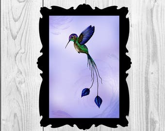 Art Print Hummingbird Digital Download