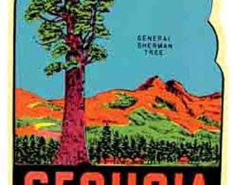 Vintage Style Sequoia National Park CA California   Travel Decal sticker