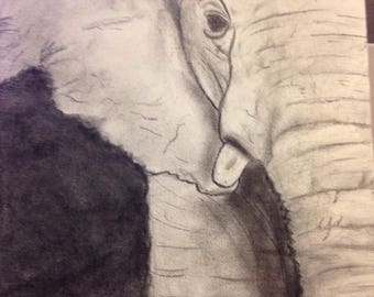 Portrait of an elephant done in charcoal on a stiff canvas