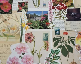 Nature Ephemera Collage Pack #5, 30+ pieces paper pack, Paper ephemera lot, junk journal pack, theme paper lot