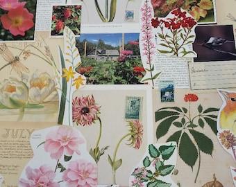 Nature Ephemera Collage Pack #5, 30+ pieces paper pack, Paper ephemera lot, junk journal pack, theme paper lot