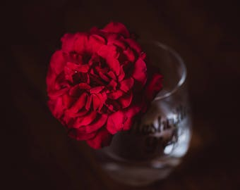 Rose Art Photography, red rose, red rose photography, red rose decor, rose decor, rose wall art, Rose Photography