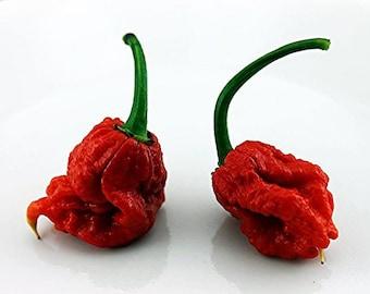 Carolina Reaper Chilli Pepper Hot HP22B Seeds 25+