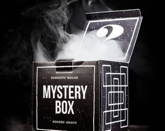 Video game mystery box