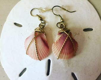 Gold scallop earrings - purple scallop earrings- sanibel island shells- festival jewelry- mermaid earrings