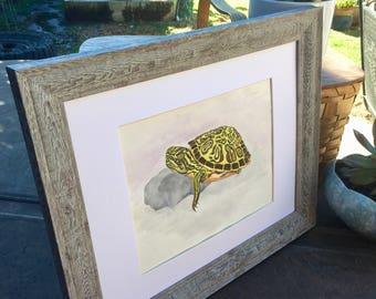 Baby Nursery Gift - Baby Turtle