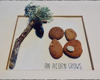 "Pebble Art - ""An Acorn Grows"" (Customised for Birthdays, Weddings, Wedding Anniversaries, Engagements, Valentines)"